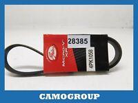 Belt Service V-Ribbed Belt Gates Fiat Tipo Kia Carens Renault Safrane 4PK1058