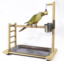 Top Parrot Bird Wood Stand Activity Center Perch Play Training Toy Rack Simple