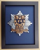 Large Scale Framed SHROPSHIRE FIRE & RESCUE SERVICE Badge Plaque