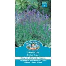 Mr Fothergill's English Dwarf Lavender Flower Seeds