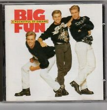 (EV201) Big Fun, A Pocketful of Dreams - 1990 CD