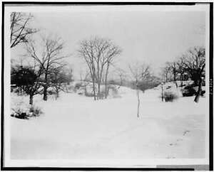 First Snow of the Season,Central Park,New York City,NYC,1909-1932,Winter 1359