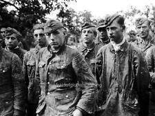 Photo. WW2. Prisoners of the Waffen SS