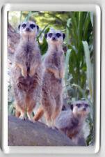 Acrylic Fridge Magnet Meerkat Trio standing - Zoo Fun Meerkats Animals NEW