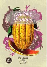 melone banana,cucumis melo, semi rari,semi strani. gr 1 40/45 semi
