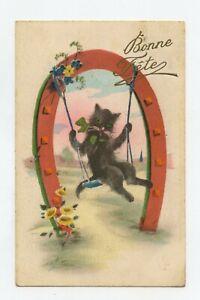 Happy Anniversary. Cat Black