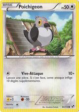 Poichigeon - N&B: Noir et Blanc - 84/114 - Carte Pokemon Française Neuve