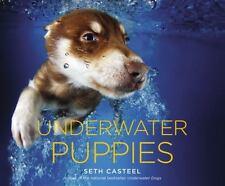 Underwater Puppies by Seth Casteel (2014, Hardcover)