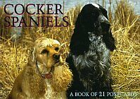 Cocker Spaniels Postcard Book (For the Love of)