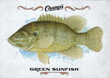 15/16 UPPER DECK CHAMPS FISH #F-22 GREEN SUNFISH *18917