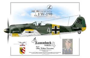 FOCKE WULF FW-190 Oblt. Walter Nowotny  Poster Profile