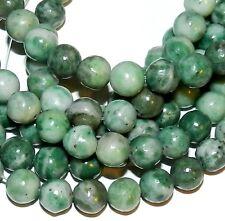 """GR1165j Green & White China Jade 8mm Round Dolomite Gemstone Beads 16"""""""