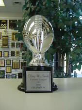 AWESOME FANTASY FOOTBALL TROPHY AWARD SILVER RESIN HEAVY QUALITY TROPHY!