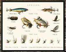 Classic... Trout & Bass Flies Chart Vintage Fishing . Vintage 8x10 Photo Print