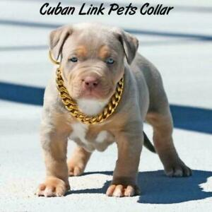 Pet Collar Thickened Gold Cuban Chain Cat And Dog Accessories C2C3