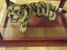 Small Tiger Mount ( One Of A Kind )
