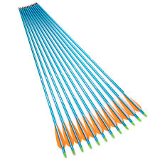 """30"""" Blue Aluminum Archery Dia 8.8mm for Compound Bow Hunting arrows X12"""