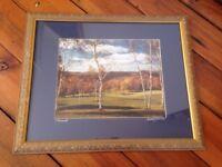 Vermont Autumn Fall Foliage Birch Tree Mountains Gilt Framed Matted Photograph
