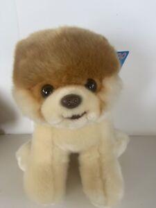 "GUND The World's Cutest Dog BOO Plush Stuffed Animal 9"" Pomeranian Brand New Tag"