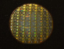 Silicon wafer 6 inch - Dual 8051 CPU : DS87C520 / DS87F520 circa 1997