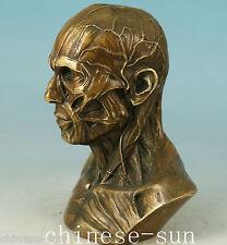 limited edition Bronze Casting Skull human skeleton Statue Figure
