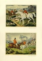 FOX HUNTING WITH DOGS FOXHOUNDS FIND AND CATCH THE FOX RED COAT HUNTER ON HORSE