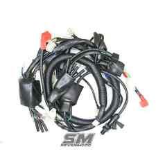 Kabelbaum für Shineray 250 STXE Luft Quad ATV Elektric Wiring Installation 250cc