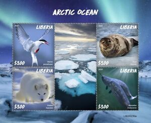 Liberia Wild Animals Stamps 2020 MNH Artic Ocean Seals Foxes Terns Narwhal 4v MS