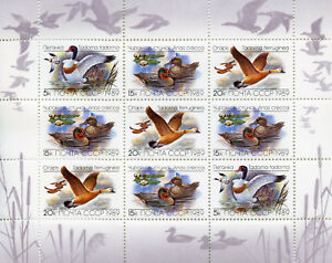 Russia 1989 MNH Ducks Teal Shelduck 9v M/S Duck Birds Stamps