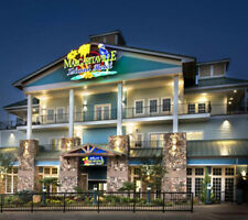 Pigeon Forge, TN, Margaritaville Island Hotel, Studio Del,12-15 Mar ENDS 2/26