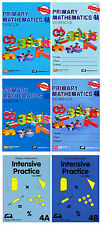 Primary Mathematics Grade 4 Intensive SET (6 Books) - FREE SHIPPING !