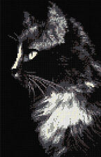 Black Cat *2 Counted Cross Stitch Kit  Animals,Cats Free P&P