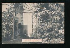Netherland 1910 Nationale Bloemententoonstelling Exhibition PPC & postmark