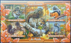 Squirrels animals 2020 m/s MNH #ML20-47
