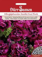 Dürr Hängepetunien  Double Duo Pink 1129 Petunie Balkonkasten Ampel Schale Kübel