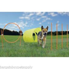 Dog Agility Equipment Tunnel Hoop Jump Weave Poles Outdoor Kyjen Outward Hound