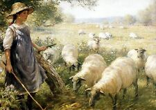 Old Vintage BLACKLOCK Farming Art Print c19th Victorian SHEPHERDESS Sheep Lamb