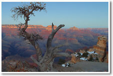 Grand Canyon - Panorama Arizona Travel Art Print POSTER