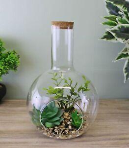 Succulents Faux Fake Plant In Glass Terrarium Indoor Garden Ornament Decor Large