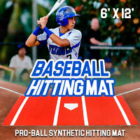 6'x12' Clay Synthetic Nylon Turf Baseball Softball Hitting Batting Practice Mat