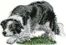"""2 1/8"""" x 3 1/8"""" Border Collie Full Body Dog Breed on Grass Embroidered Patch"""