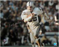 Fred Biletnikoff Signed Autographed 16x20 Photo Oakland Raiders Silver Ink JSA