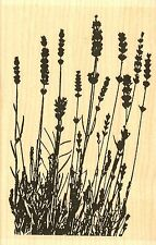 Lavender Flowers Wood Mounted Rubber Stamp IMPRESSION OBSESSION - NEW, G7775