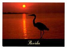 Great Blue Heron Postcard Florida Everglades Birds Sunset Unposted