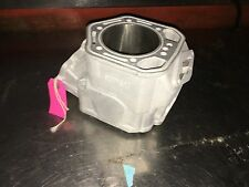 Replated Ski-doo 800 HO Cylinder 420613852 MXZ Summit Renegade $100 CORE 613852