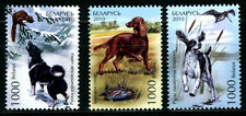 2010. Belarus. Dogs. Hounds. MNH. Set