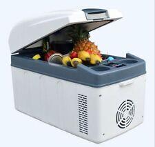 Portable DC 12/24V 20L Refrigerator Cooler & Warmer for Car and Home  220v New !