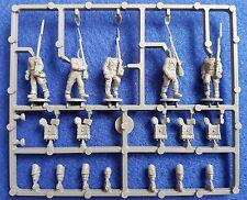 WARLORD GAMES NAPOLEONICHE WATERLOO guerra britannici Fanteria Linea