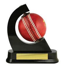 Unbranded Cricket Balls