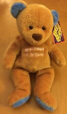 Mary Meyer Girl Brownie Scout Bear Bean Bag Plush
